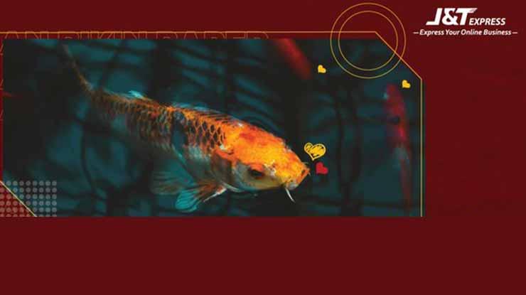 Kirim Ikan Hidup Lewat JT