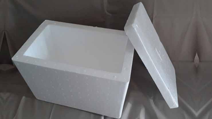 Masukkan ke Box Styrofoam